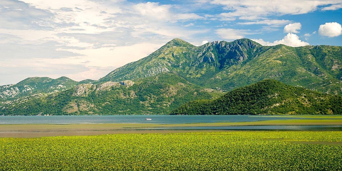 Скадарское озеро - природное чудо на границе Черногории и Албании